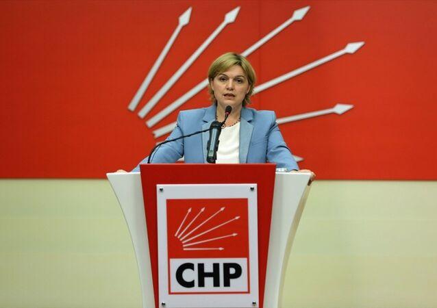 CHP Genel Başkan Yardımcısı ve Parti Sözcüsü Selin Sayek Böke basın açıklaması yaptı.