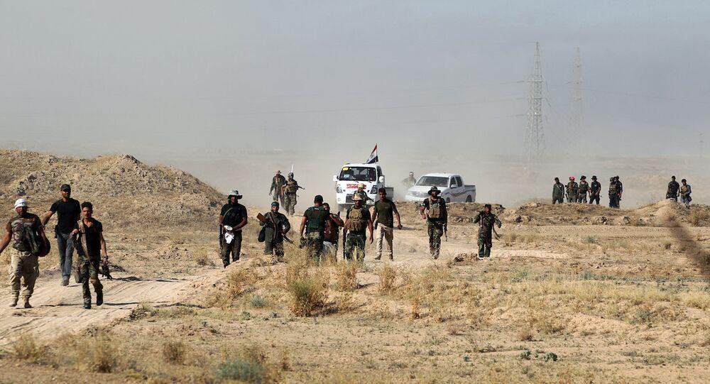 Irak'ta ordu ve hükümet yanlısı güçler Felluce'yi IŞİD'den geri almak için ilerliyor.