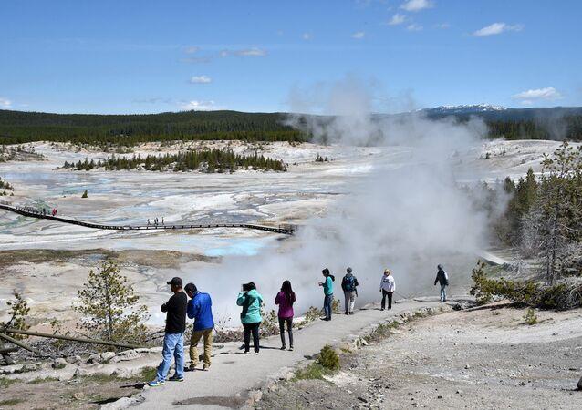 Yellowstone Doğa Parkı'ndaki Norris Geyser Çukuru.