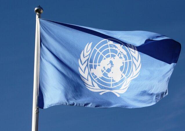 Birleşmiş Milletler bayrağı