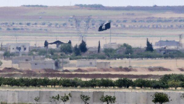 Türkiye - Suriye sınırı / IŞİD bayrağı - Sputnik Türkiye