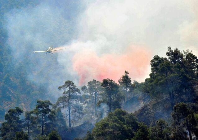 Kıbrıs 'taki Trodos dağı eteklerinde çıkan ve rüzgarın etkisiyle hızla yayılan orman yangını nedeniyle 4 köy boşaltıldı, 2 itfaiyeci hayatını kaybetti.
