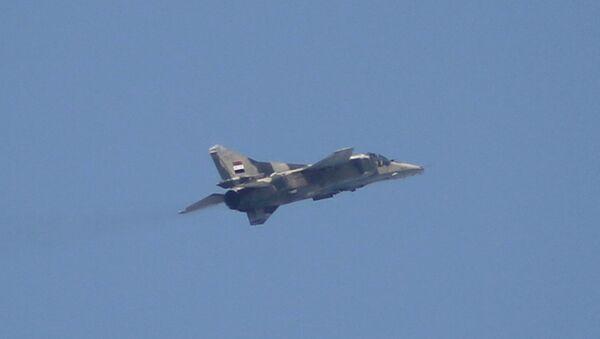 Suriye ordusuna ait bir MiG-23 - Sputnik Türkiye