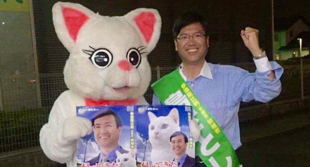 Kedi Spence parlamentoya girmek için 'oy istiyor'