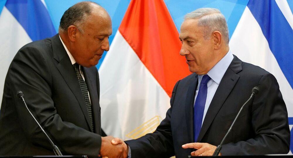 Mısır Dışişleri Bakanı Samih Şükri ve İsrail Başbakanı Benyamin Netanyahu