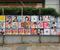 Japonya'da bir politikacı Aichi vilayetindeki Mikawa bölgesindeki seçimler için Van kedili seçim kampanyasına girişti.