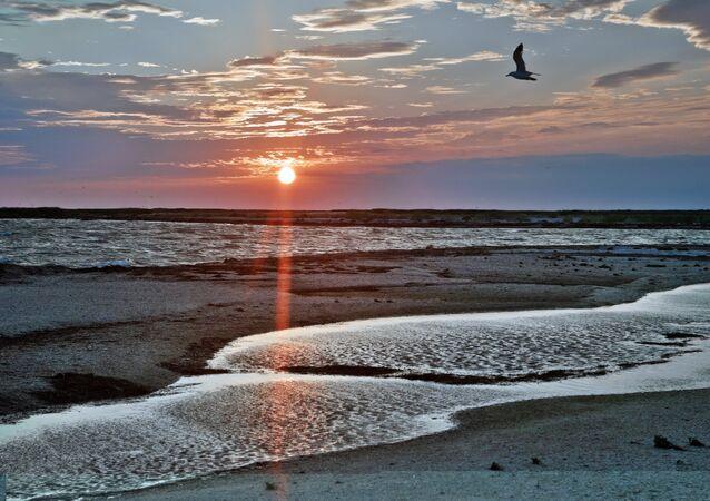 Kırım'ın cenneti: Kuğu Adaları