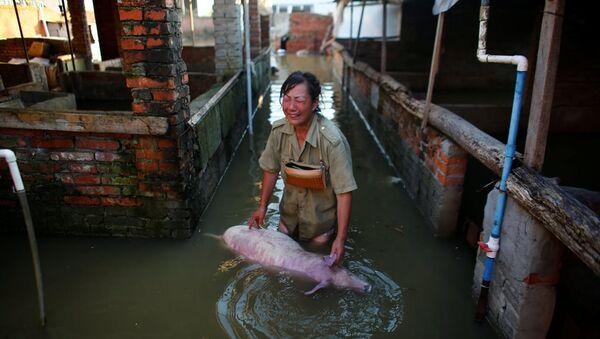 Çin'de meydana gelen sel ve toprak kaymaları sonucunda hayatını kaybedenlerin sayısı 114'e yükselirken, kaybolanların sayısı ise 111'e ulaştı. - Sputnik Türkiye