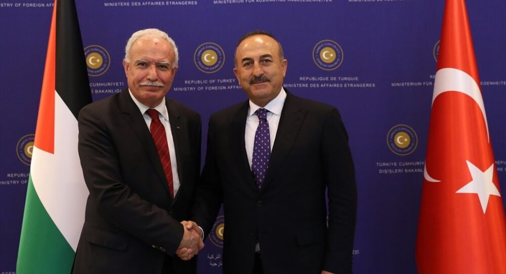 Mevlüt Çavuşoğlu - Riyad el Maliki