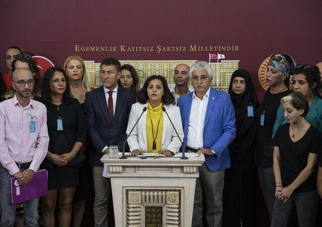 CHP İstanbul Milletvekili Selina Doğan, TBMM'de, LGBTİ bireyleriyle birlikte basın toplantısı düzenledi.