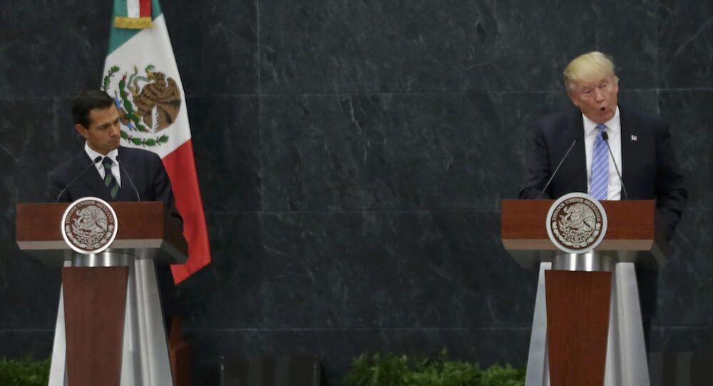 Meksika Devlet Başkanı Enrique Pena Nieto ve Cumhuriyetçi başkan adayı Donald Trump