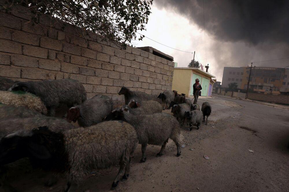 IŞİD, Kayyara'daki petrol kuyularını patlattı