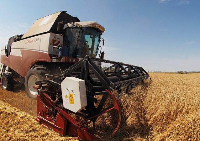 Rusya tarım