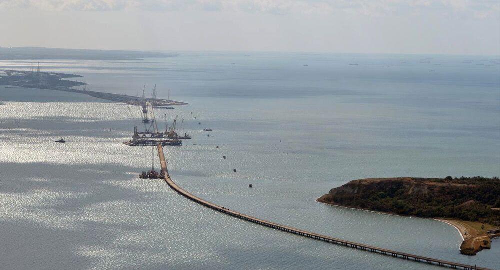 Kerç Köprüsü'nün Kırım'ı Rus ulaşım sistemine tümüyle entegre edeceğinden köprü inşaatının en önemli proje olduğunu kaydeden Putin, Başbakan Dmitriy Medvedev'den çalışmaları dikkatli biçimde izlemesini istedi.