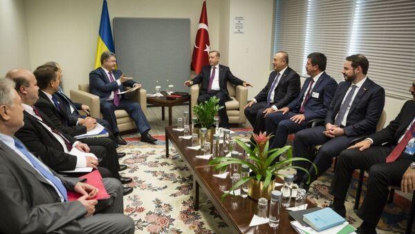 Cumhurbaşkanı Recep Tayyip Erdoğan - Ukrayna Devlet Başkanı Petro Poroşenko - Sputnik Türkiye