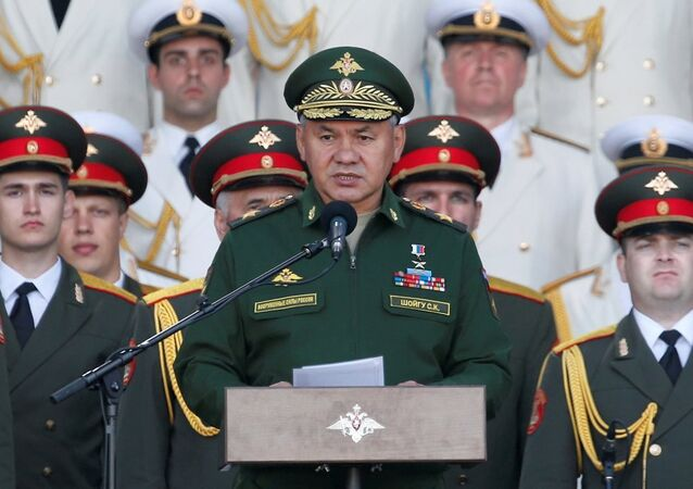 Rusya Dışişleri Bakanı Sergey Şoygu
