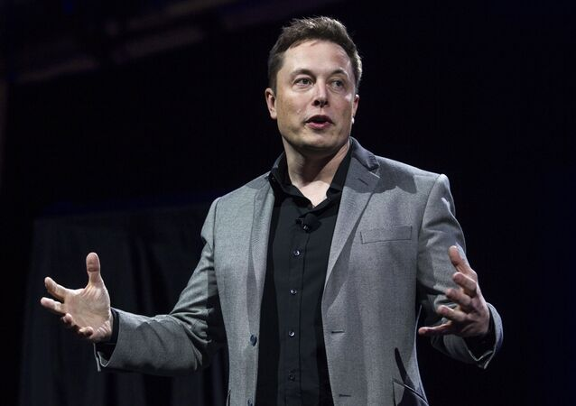Elon Musk, CEO of Tesla Motors and SpaceX