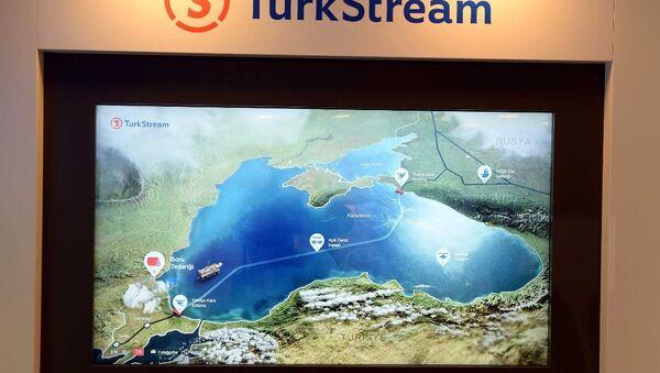 Türk Akımı Projesi sergisi 23. Dünya Enerji Kongresi'nde - Sputnik Türkiye