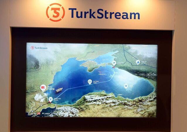 Türk Akımı Projesi sergisi 23. Dünya Enerji Kongresi'nde