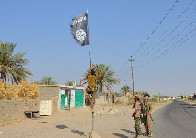 Irak askerleri Anbar'daki IŞİD bayrağını indirdi.