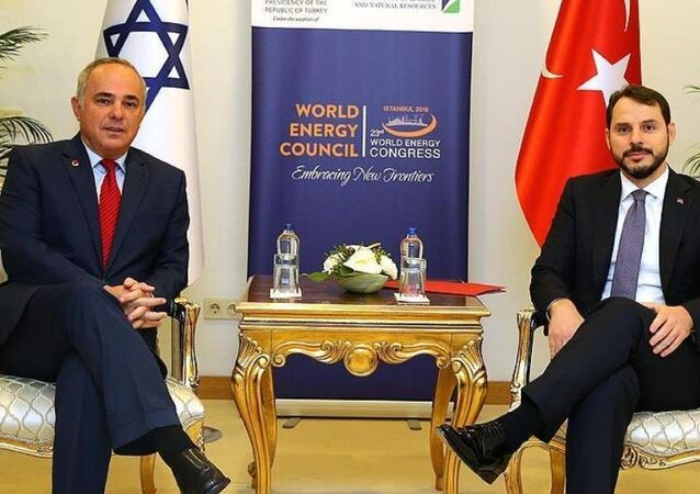 İsrail Enerji Bakanı Yuval Steinitz - Türkiye Enerji Bakanı Berat Albayrak