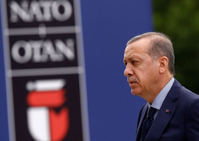 Recep Tayyip Erdoğan / NATO