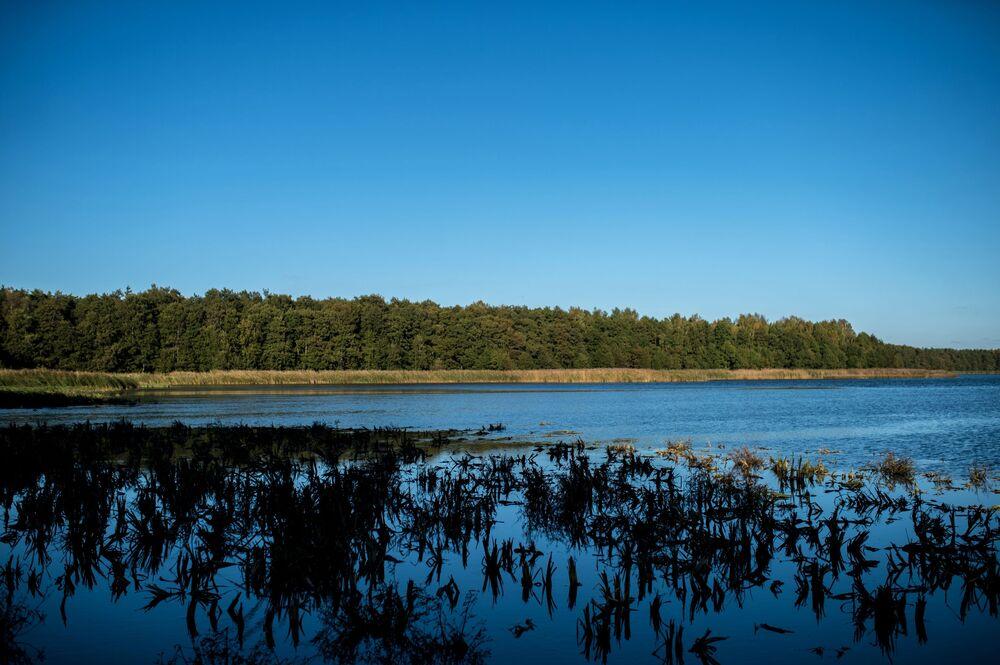 Kuron Dili milli parkındaki Çayka (Martı) Gölü.