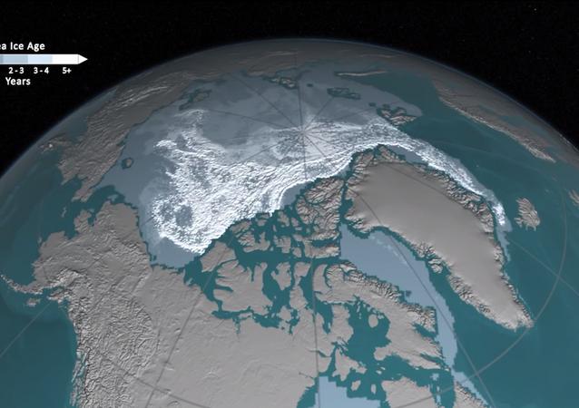 Kuzey Buz Denizi'ndeki buzulların erimesi