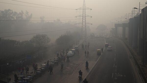 Yeni Delhi'de hava kirliliği - Sputnik Türkiye