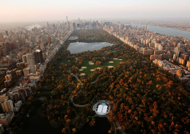 New-York'ta güneşin doğduğu anda Cenrtal Park manzarası.