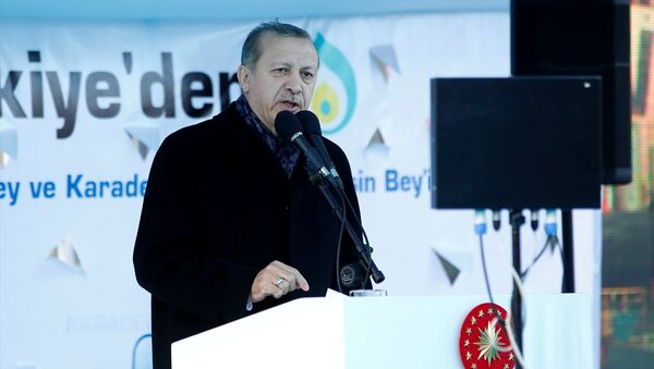 Cumhurbaşkanı Recep Tayyip Erdoğan, Tuzla'daki enerji üretebilen gemilerin uğurlandığı törende konuştu - Sputnik Türkiye