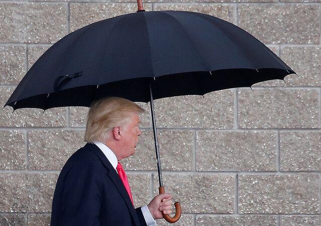 ABD'nin seçilmiş başkanı Donald Trump