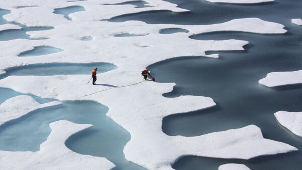 Amerikalı araştırmacılar Kuzey Buz Denizi'nde küresel ısınma ilgili veriler topluyor - Sputnik Türkiye