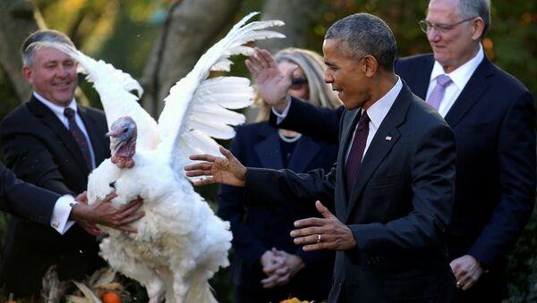 Barack Obama, Şükran Günü - Sputnik Türkiye