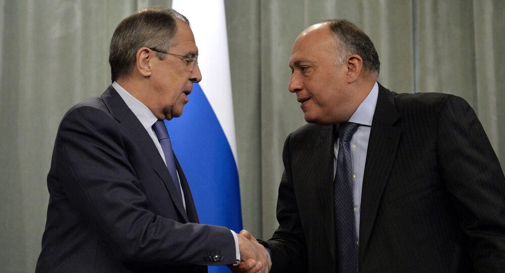 Rusya Dışişleri Bakanı Sergey Lavrov ve Mısırlı mevkidaşı Semih Şükri