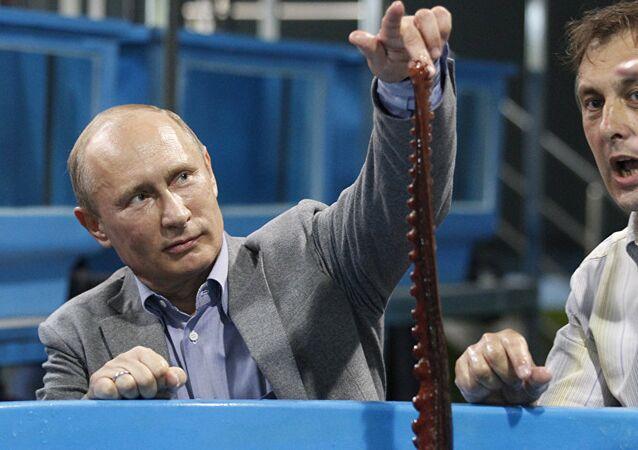 Batı basınında Putin ve ahtapot masalı
