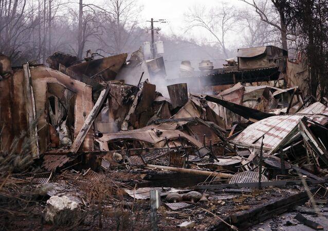 ABD'nin Tennessee eyaletindeki orman yangını