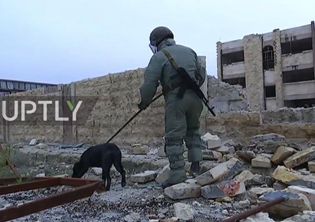 Halep'in doğusundaki mayın temizleme operasyonu başladı