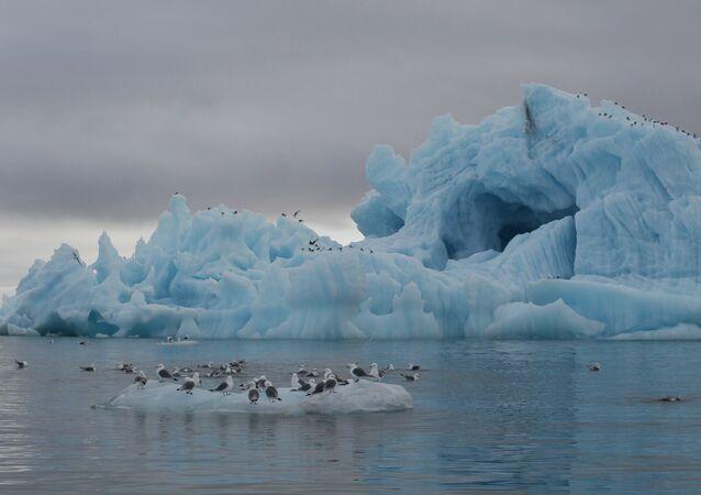 Buzdağı, Rusya