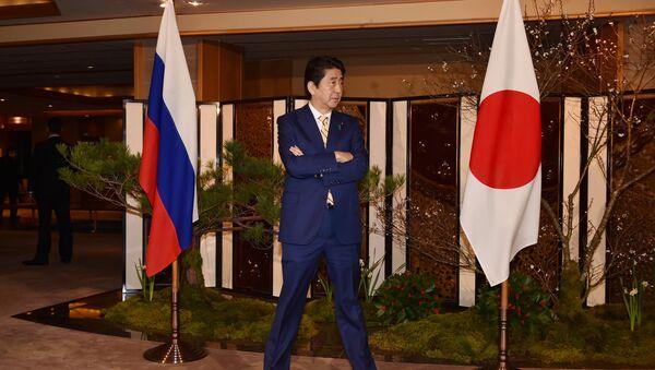 Japonya Başbakanı Şinzo Abe- Rusya- Bayrak - Sputnik Türkiye