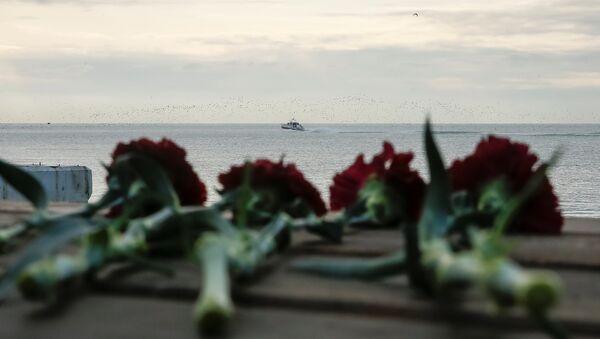 Karadeniz'de düşen Rus Tu-154 uçağı - Sputnik Türkiye