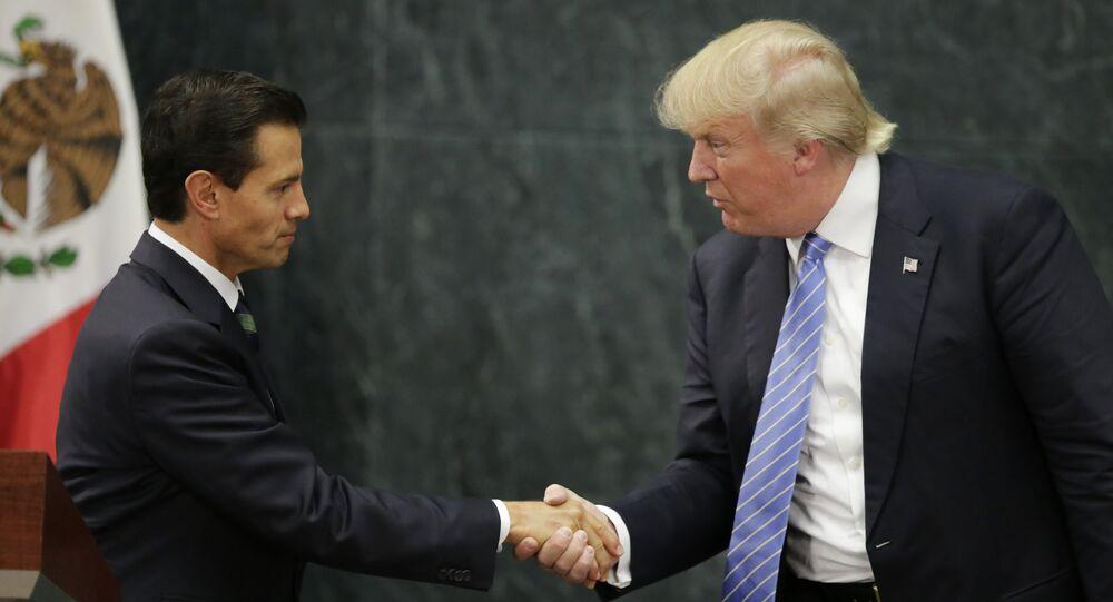 ABD'nin yeni başkanı Donald Trump ve Meksika Devlet Başkanı Enrique Pena Nieto