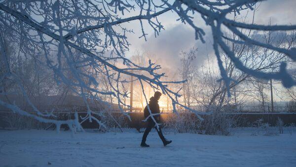 Moskovalılar kışın en soğuk günlerini yaşadı - Sputnik Türkiye