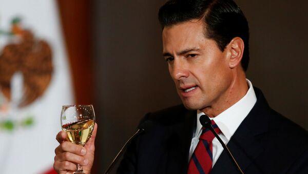 Meksika Devlet Başkanı Enrique Pena Nieto - Sputnik Türkiye
