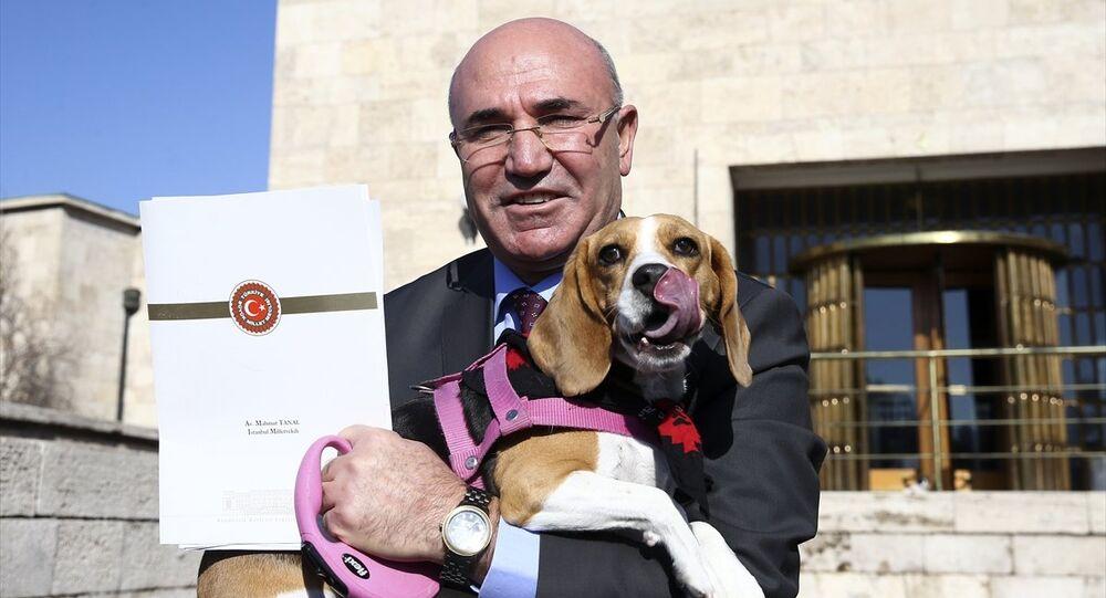 CHP İstanbul Milletvekili Mahmut Tanal, köpeği Dora ile Meclis'te basın toplantısı düzenledi.