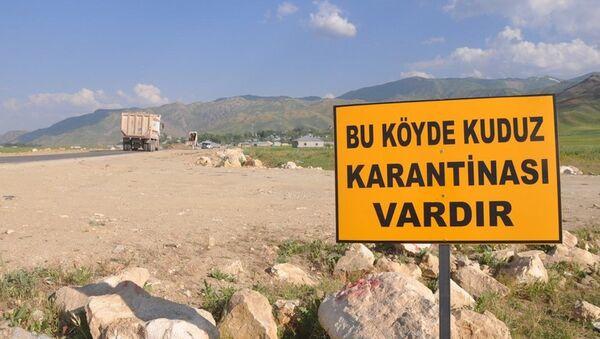 Kuduz - Sputnik Türkiye