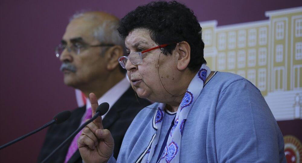TBMM İnsan Haklarını İnceleme Komisyonu Başkanvekili CHP'li Şenal Sarıhan