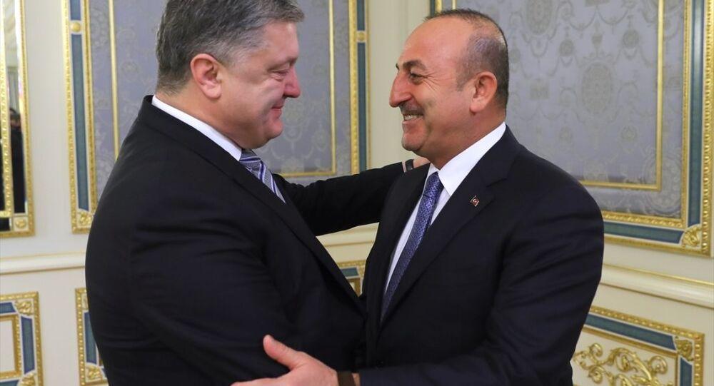 Mevlüt Çavuşoğlu -  Pyotr Poroşenko