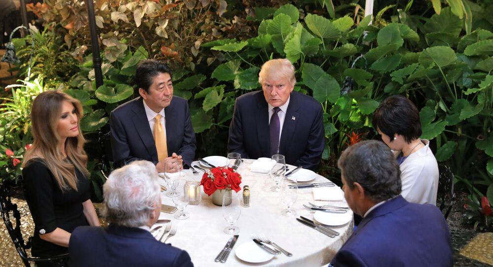 ABD Başkanı Donald Trump- Japonya Başbakanı Şinzo Abe