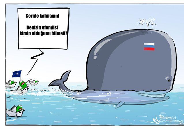 'Suriye'de 50'den fazla NATO gemisi Amiral Kuznetsov'a eşlik etti'